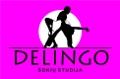 Delingo, šokių studija