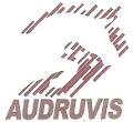 Audruvis, jojimo sporto klubas